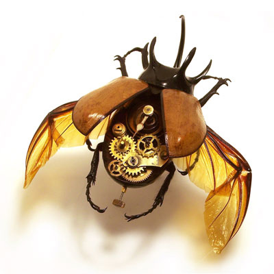 Scary Cyborg Robotic Insect Art