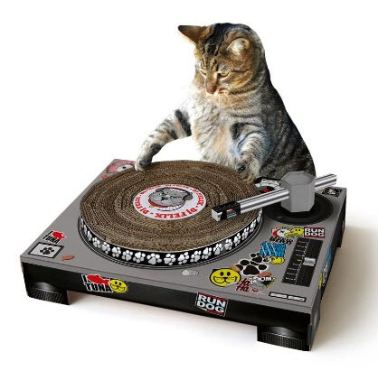 Cat-Scratch-DJ
